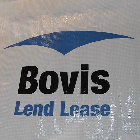 Bovis01 copy 72 dpi