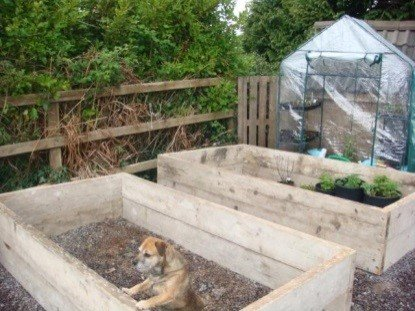 Natural Wood Preservative For Raised Beds
